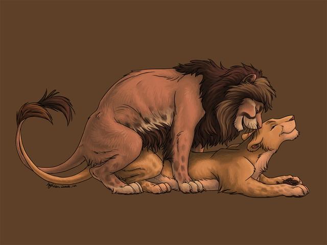 секс льва фото