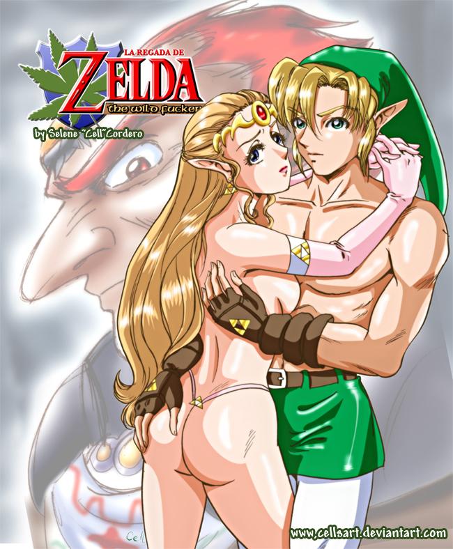 zelda porno y de link