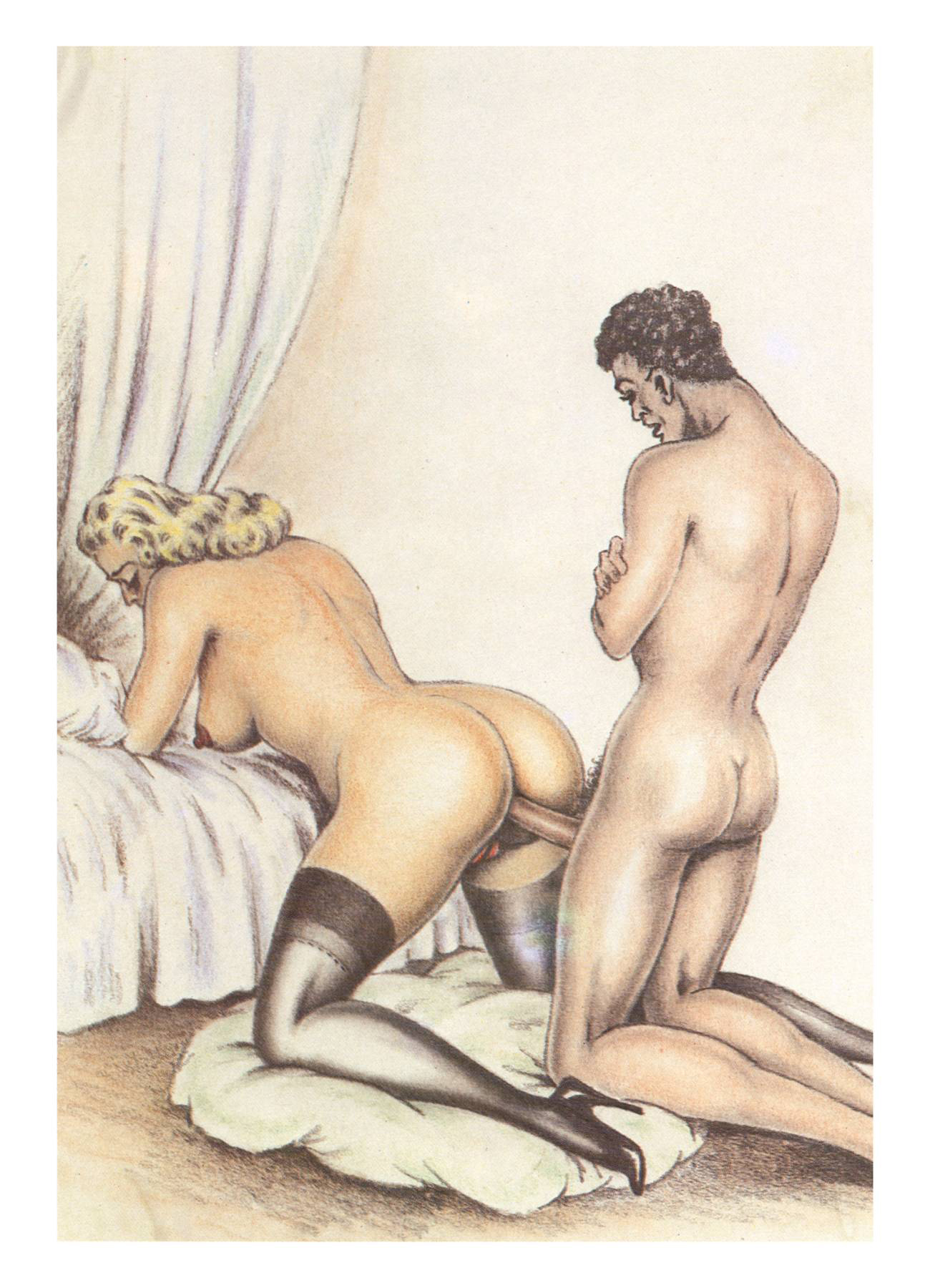 Erotic adult cartoons