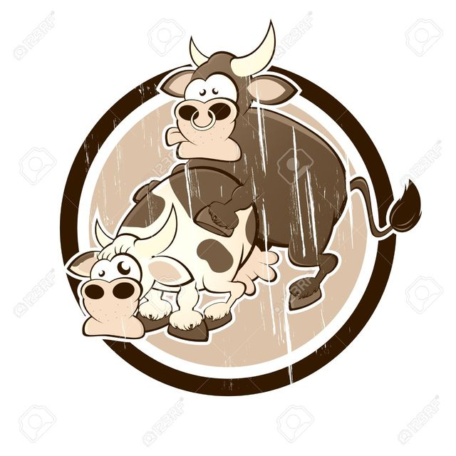 xxx porn cartoon sex free cartoon having cartoons cow bull vintage shock vector stock badge