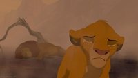 the lion king porn plugins lion king quotes mufasa simba kovu