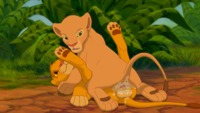 the lion king porn data show cub cum pussy inside disney feline fema