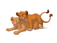the lion king porn cec abecf nala simba lion king