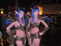 wow porn nelfs blizzcon journey pictures