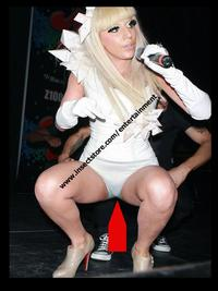 lady toons sex xxx lady gaga dick