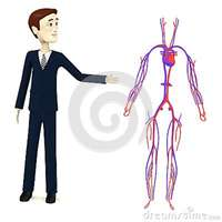 sexy girl toon cartoon businessman circulatory system royalty free stock