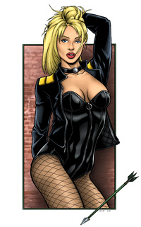toon black porn cac bbead justice league black canary